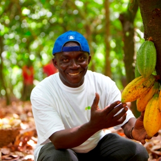 Cocoa Ghana