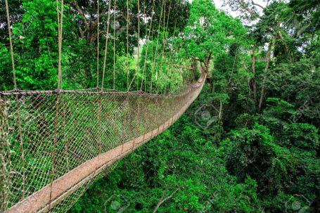 Kakum-National-Park