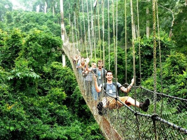 Canopy Walkway Ghana