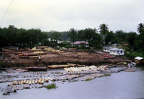 Ghana RAINFOREST Ghana